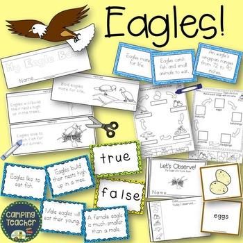 Eagles Activity Set