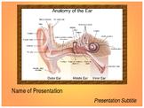 Ear Anatomy PPT Template