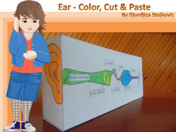 Ear - Color, Cut & Paste