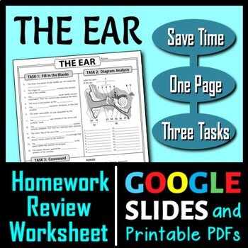 Ear Homework Review Worksheet / Test Prep {Editable}