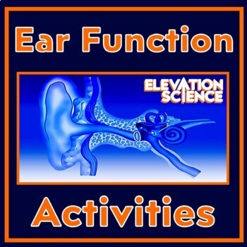Ear Parts & Hearing Lesson Bundle:  Power Point, Worksheets, Lab, Quiz