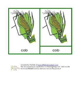 Ear of Corn Nomenclature Cards