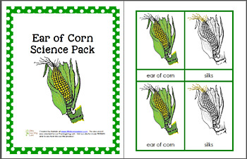 Ear of Corn Science Pack