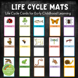 Early Childhood Life Cycle Mats