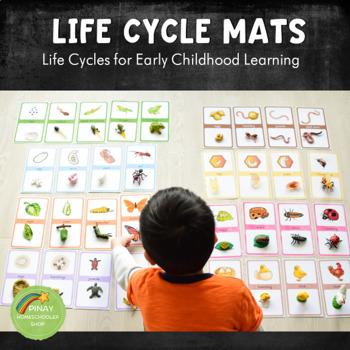 Early Childhood Life Cycle Mats