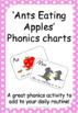 Early Childhood MEGA Phonics Resource Set