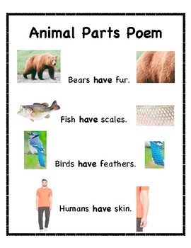 """Early Childhood Shared Reading """"Animal Parts"""""""