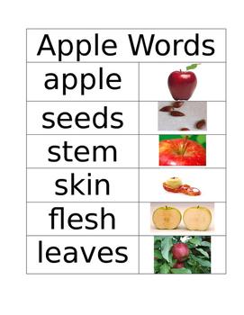 Preschool-Grade 2 Vocabulary: family, school, community, seasons, shapes...
