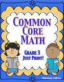 Winter Review  Common Core No Prep Math Printables Grade 3