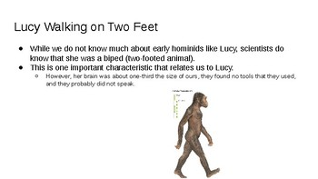 Early Hominids PowerPoint