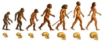 Early Human Ancestory