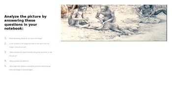 Early Human (Hominid)