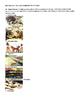 Early Humans and Mesopotamia Bundle