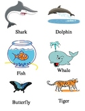 Early Learning Picture Cards