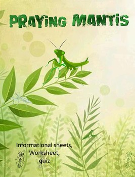 Early Science-Praying Mantis