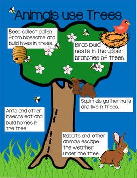 Earth Day/ Arbor Day Lesson Plans and Activities - Digital Distance Learning