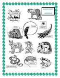 Earth Day-Color the Rainforest Animals Headband-Word Search