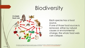 Earth Day Environment Recycle Reduce Reuse Food Web Lesson w 10 video links