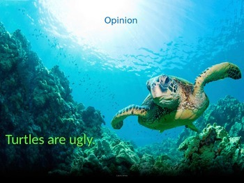Earth Day Fact Opinion
