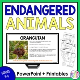 Endangered Animals PowerPoint + Research Activity
