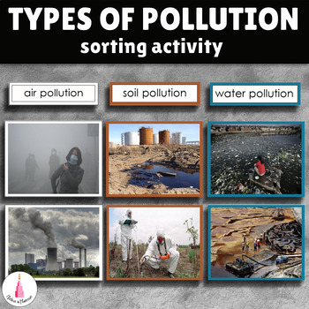Types of Environmental Pollution Montessori Sorting Card