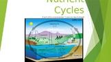 Earth/Environmental Science Worksheet: Nutrient Cycles
