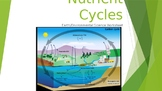 Earth/Environmental Science Worksheet: Nutrient Cycles