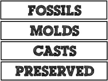 Fossils Pocket Chart Vocabulary (EDITABLE)