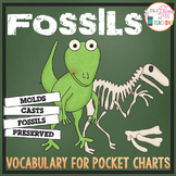 Fossils Pocket Chart Vocabulary | EDITABLE