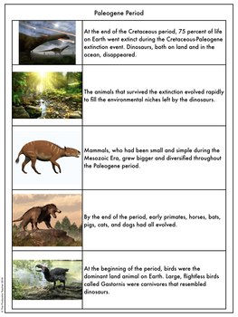 Earth History Reading Passages: Paleogene Period