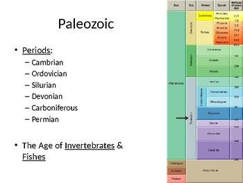 Earth History Teaching Slides: Paleozoic