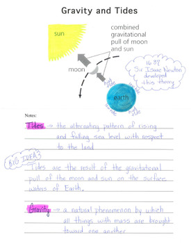 Interactive Notebook - Gravity and Tides Gravitational Pull