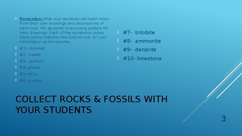 Earth Science: Rocks & Fossils