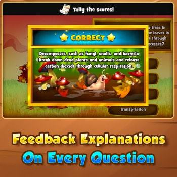 Earth Systems and Patterns - Quiz Game Warm-Up