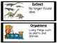 Earth's Past and Fossils Vocabulary Cards (Black Border) 4.E.2