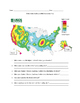 Earthquakes Independent Activity  - Catastrophic Events  M