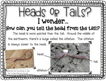 Earthworm Close Read