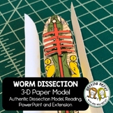 Earthworm Dissection - 3-D Paper Model