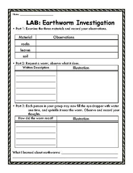 Earthworm Investigation Lab Sheet: HANDS ON activity!