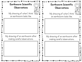 Earthworm Observations and Investigations for Interactive Notebooks