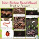 Earthworms Craft & Non-Fiction Read Aloud