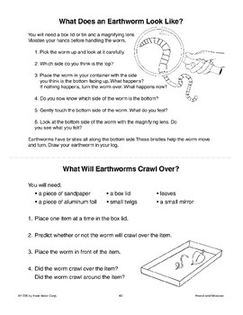 Earthworms: Underground Recyclers