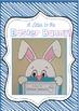 Easter Bunny Letter Craftivity