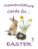 Easter 3 Part Nomenclature Cards, with REAL pictures and verbs
