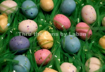Easter Basket Grass and Easter Egg Candy Stock Photo #64