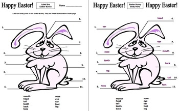 Easter Bunny Body Parts Worksheet - Label 11 Body Parts in English