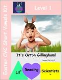 Easter CVC Short Vowel Words Activity (OG)