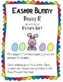 Easter Egg Bossy R Picture Sort