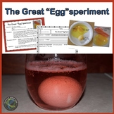 Easter Egg Science Experiment