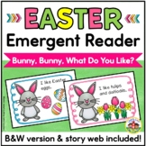 Easter Emergent Reader and Story Web: Bunny, Bunny, What Do You Like?
